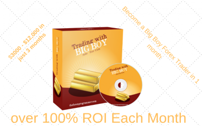 Big Boy Forex Robot Review ( A Proven System)